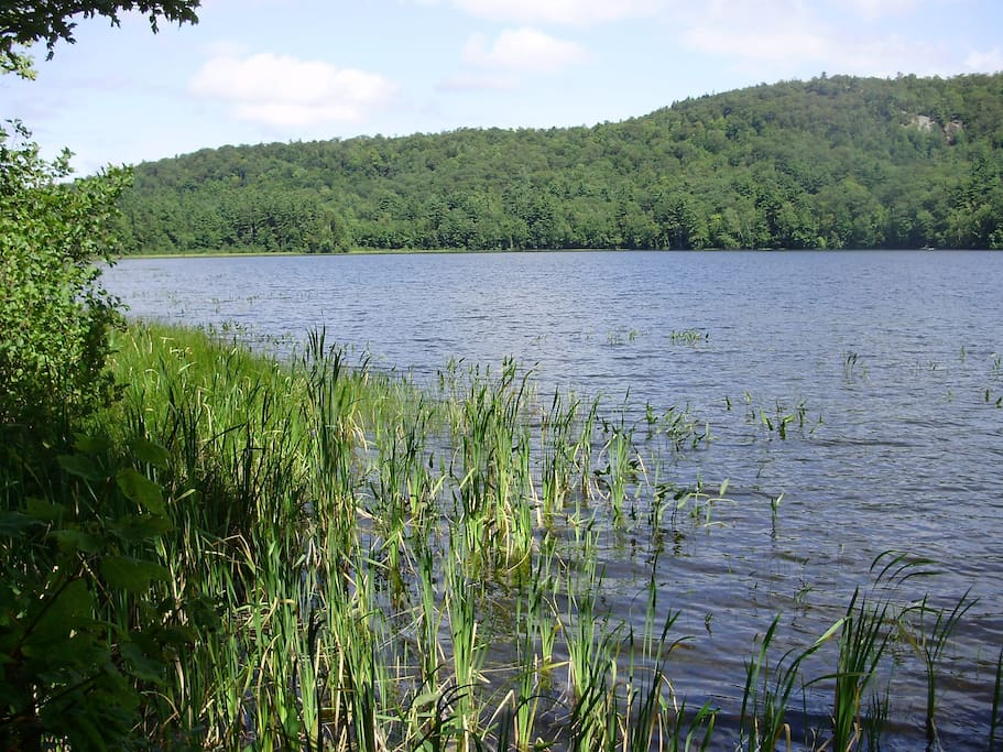Halls Pond, stocked with Brown Trout, and walking trails all around it