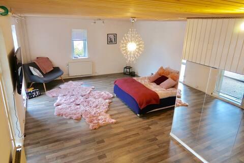 Modern one large bedroom apartment 30km BILLUND