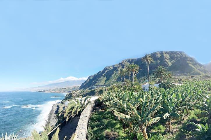 HACIENDA EL CARDON - VILLA PLANTACION - San Juan de la Rambla - Villa