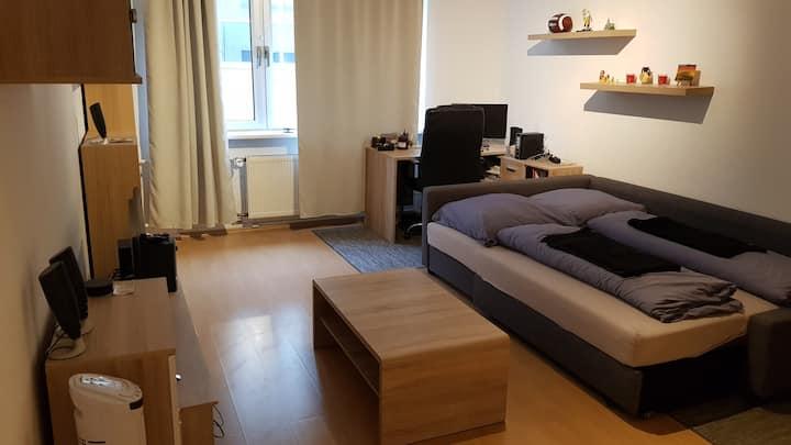 Spacious Room in the Heart of Frankfurt