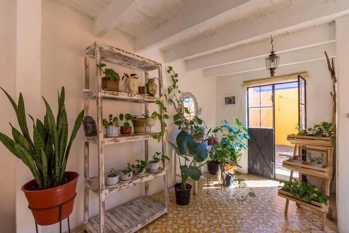 La Casa de Las Golondrinas, Best location in town!