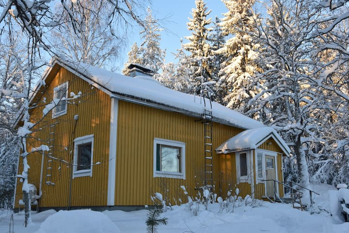 Old wooden house 20 minutes from Koli