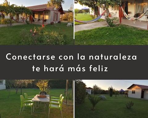 Entrare in contatto con la natura ti renderà più felice