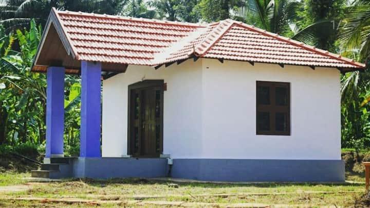 Phalam Farmstay - Luxury Villas -  paddy