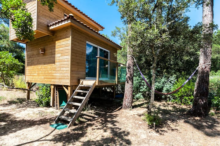 The Tiny House, rent a writer's home