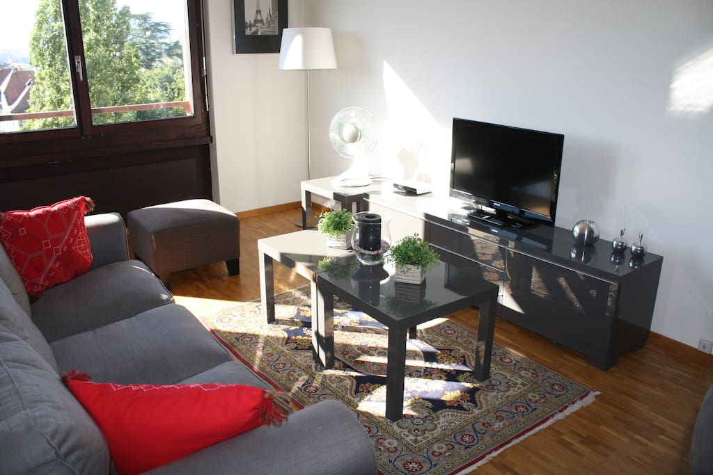 Cosy sofa rea:  Flat screen tv, dvd player, internet / wifi.