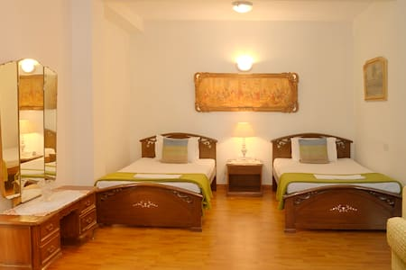 The Stay Inn New Delhi - Νέο Δελχί - Bed & Breakfast