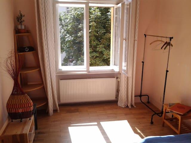 Lovely seperate room in Prague  - Prag - Daire