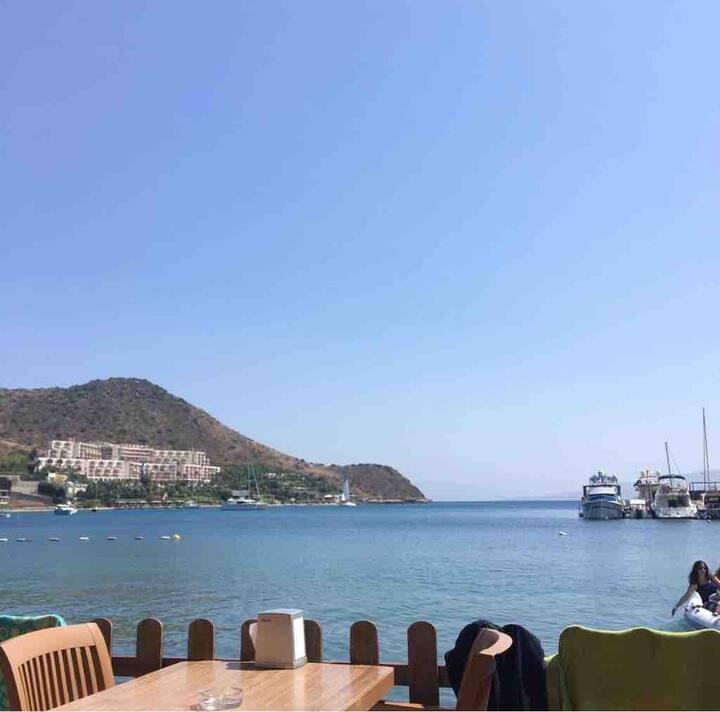 Bodrum doğa ve deniz manzaralı kiralık Villa