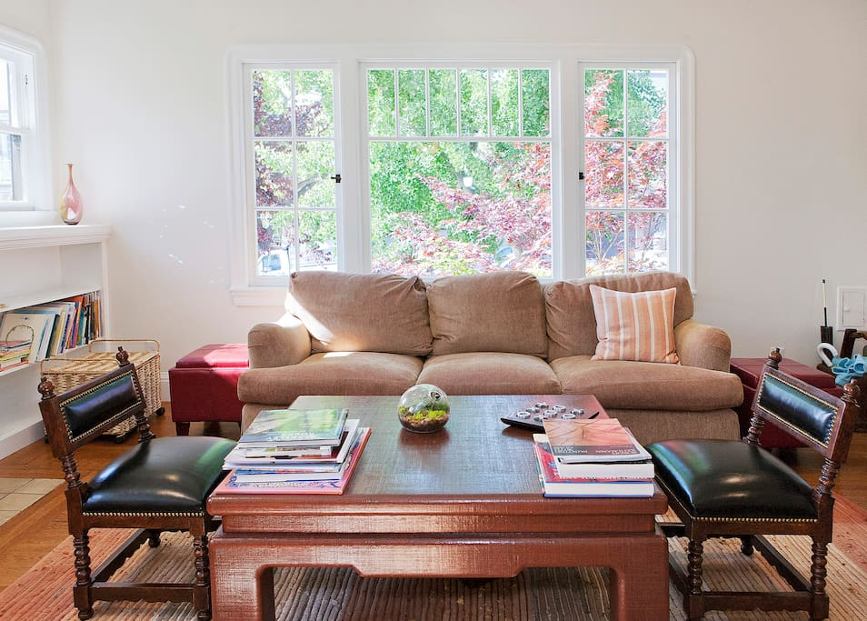 Living room which looks out onto a gorgeous ginkgo tree and maple tree