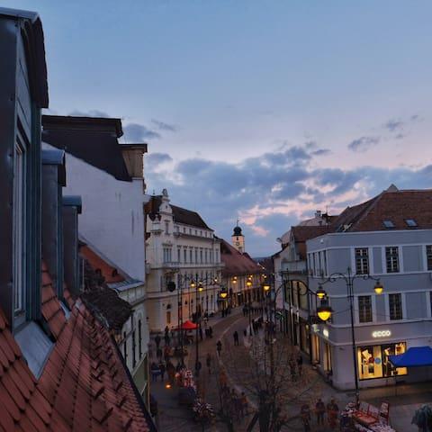 Charming Studio - great view of the Old Street - Sibiu - Huoneisto