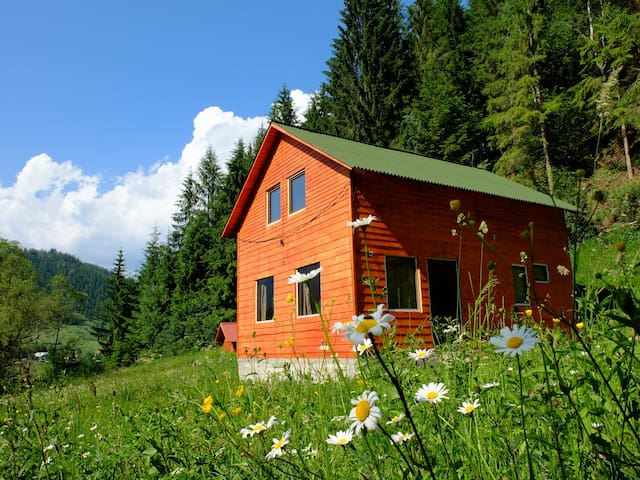 Cozy Mountain Cabin in Transylvania