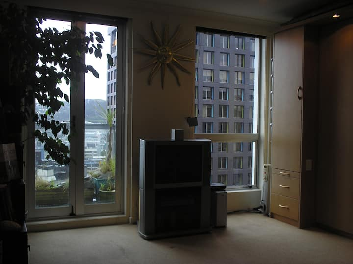 COMPACT CENTRAL APARTMENT WITH STUNNING VIEW