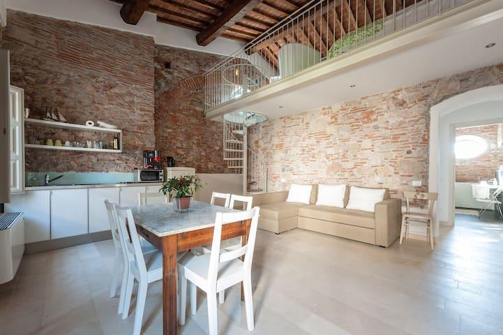 Pisa residence Villa Del  Lupo V