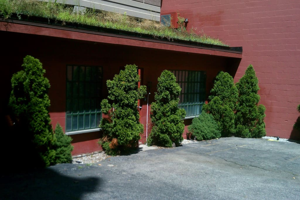 Exterior Showing Greenroof