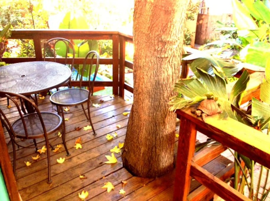 Awesome deck with built-in tree!!
