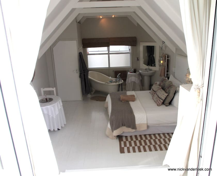 Whale tail Room