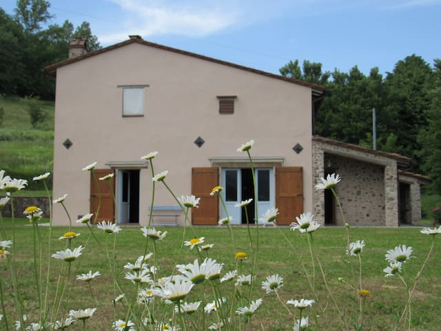 Cottage in Lucca area - Rocca - Talo