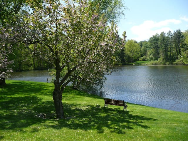 Elegant country home on secluded pond - New Canaan - Дом