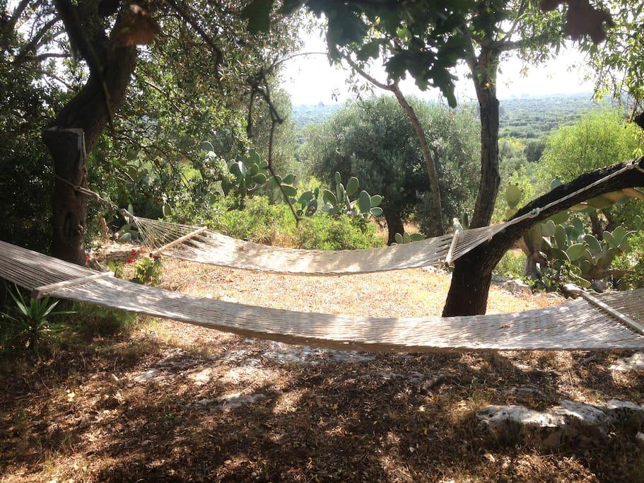 hammocks near heaven