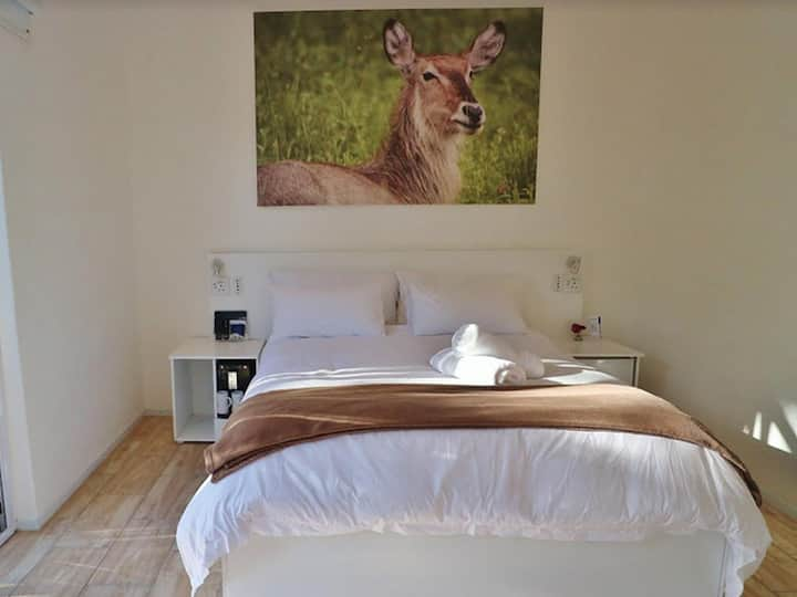 Mountain Petite room + optional Jacuzzi