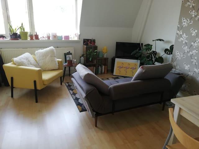 Fijne en gezellige kamer voor de Vierdaagse