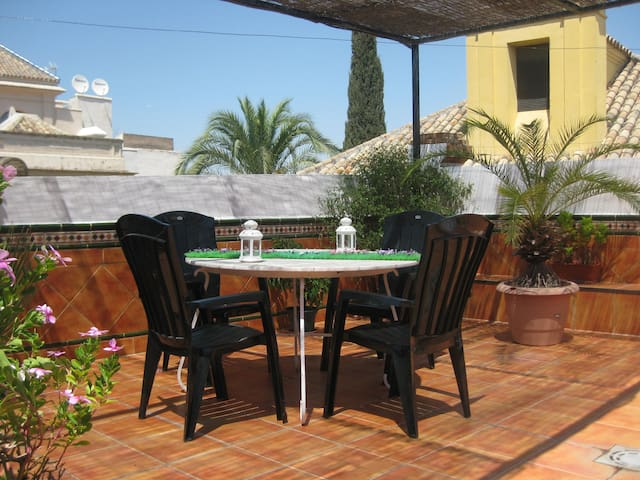 Beautiful apartment roofterrace  - Siviglia - Appartamento