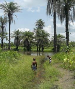LOTUS-By the beach of Atlantic-Senegal