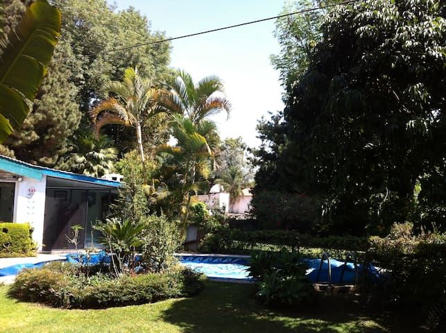 House w/ swimming pool and fruit trees