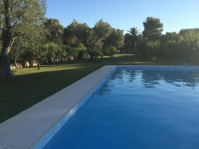 Mesagne cottage countryside with swimmingpool - Torretta - Manfredonia