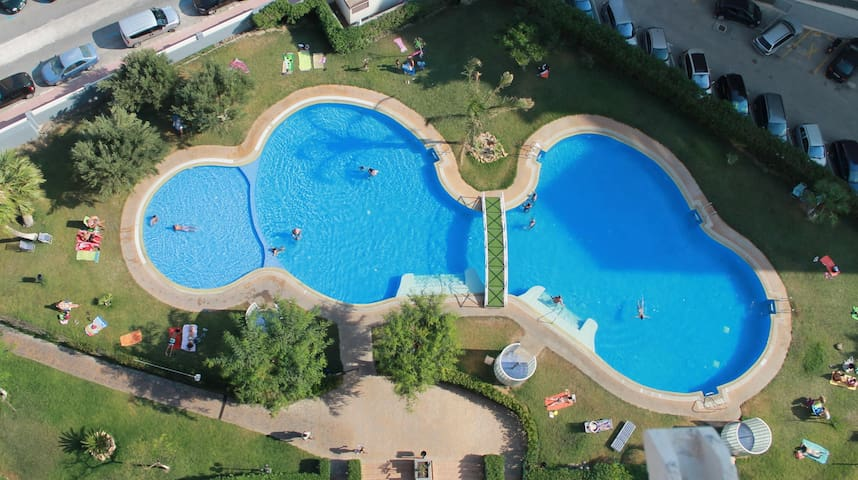 Huge swimming pool surronded by a grassy garden to sunbathe!
