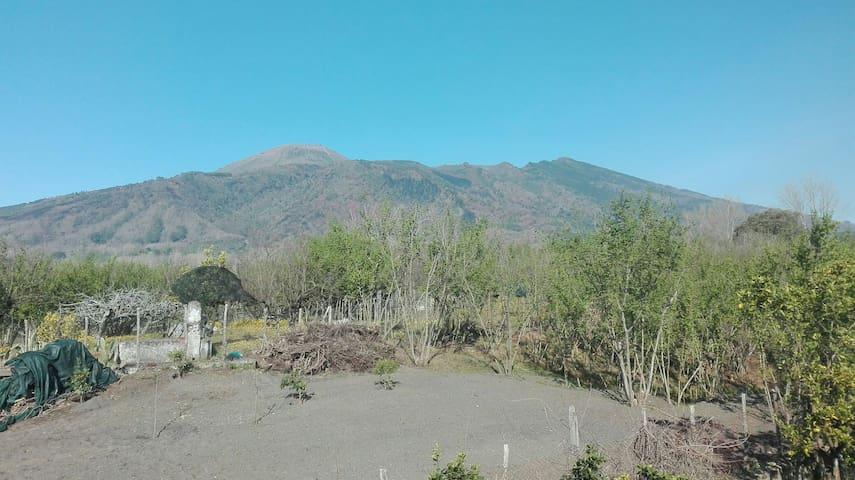 Tranquilla camera sotto al Vesuvio - Terzigno