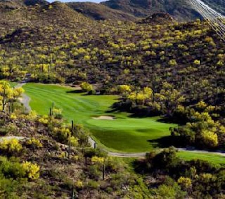 Starr Pass Golf, within walking distance.
