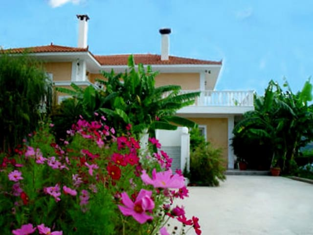 Rent a place in Paradise  - Kefallonia - Appartement