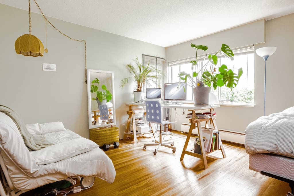 Lots of natural light in my home! My plants will stay with you. Don't worry they are chill.