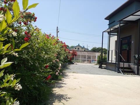 Recinzioni di rose con terrazze.