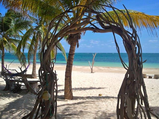 Sian Ka'an Treetop Cabana - Tulum - Casa na árvore