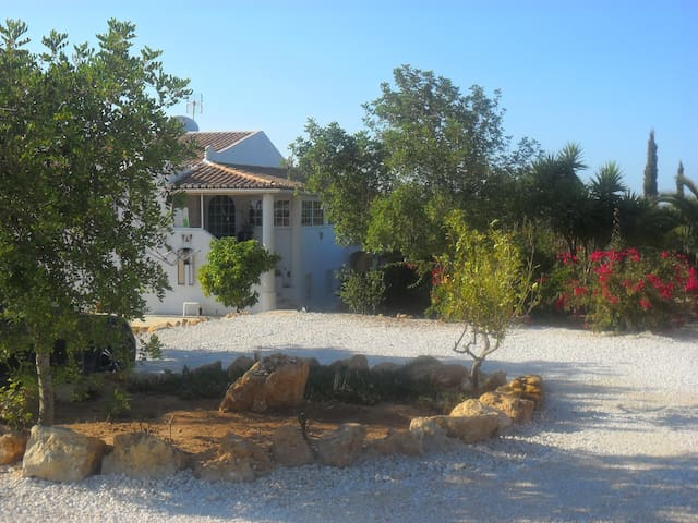 algarvian house countryside - Areias de Porches - Casa