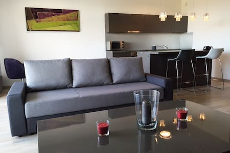 Modern and comfy flat close to airport - Meyrin - Byt