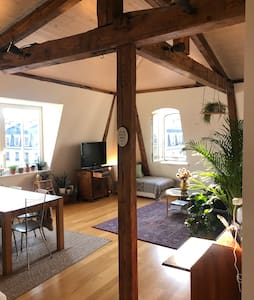 Charming top floor appartement City Center