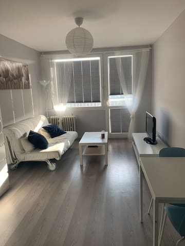 New renovated apartment righ by the subway