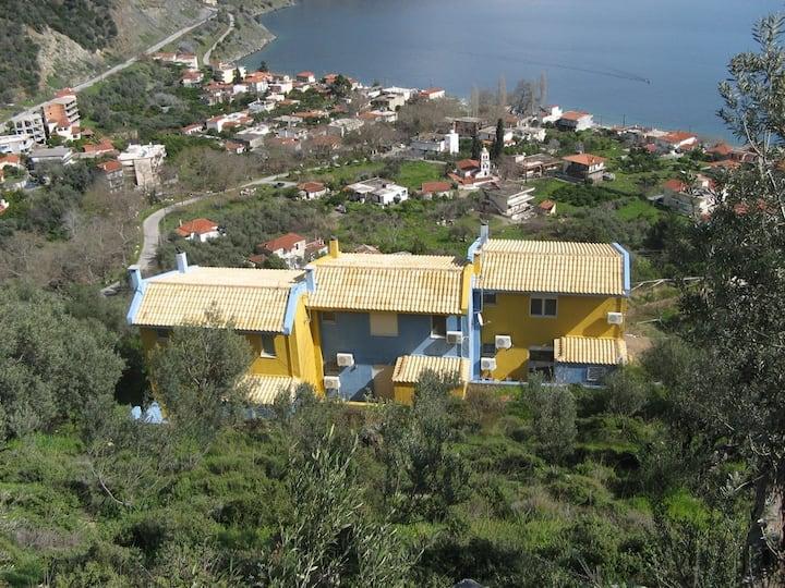 Ilia Houses