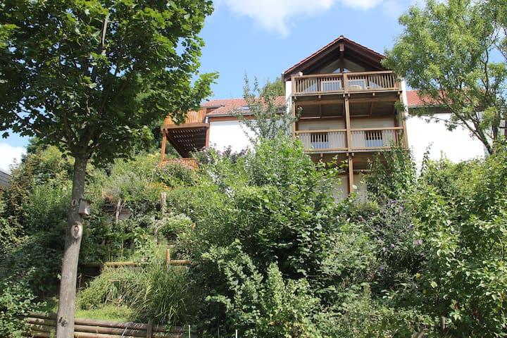 Hübsches Gästezimmer mit Bad/Küche - Bensheim - House