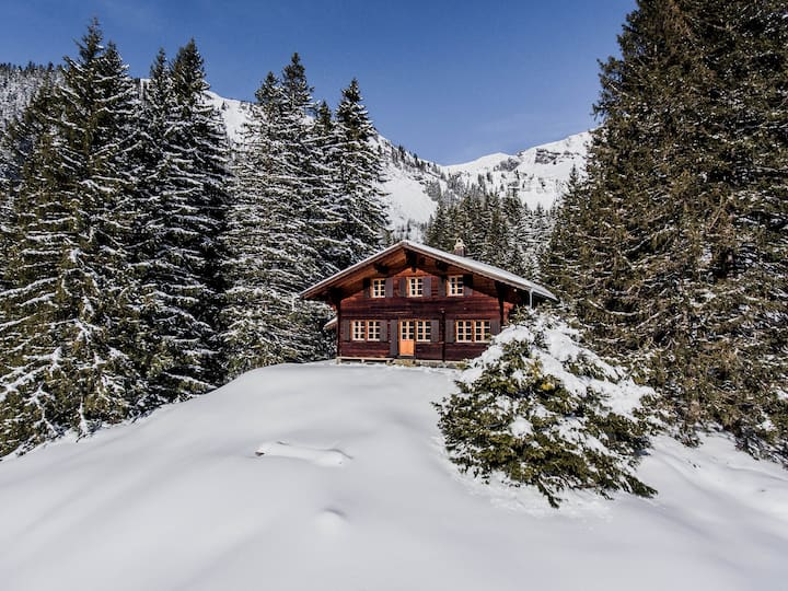Chalet Lecocq with alpine feeling