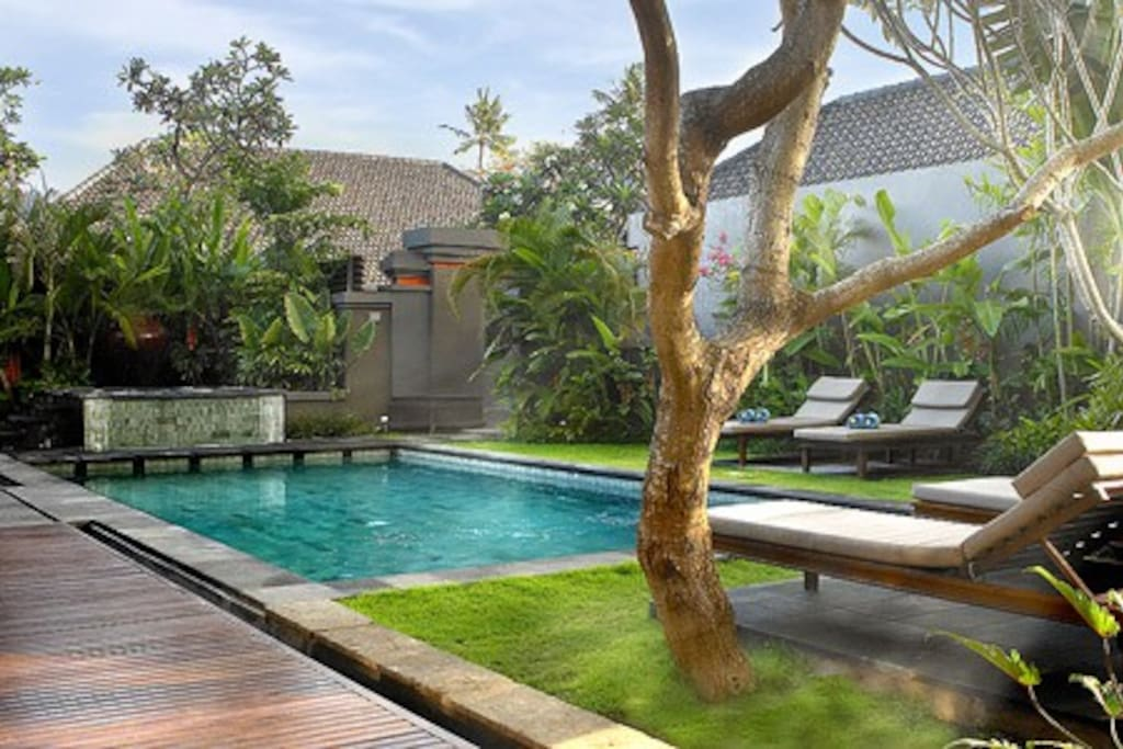 Big 10M pool surrounded by beautiful tropical garden