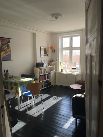 Cozy apartment in central Cph