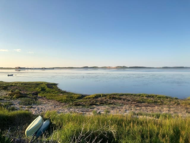 Seagrass Oceanfront Retreat
