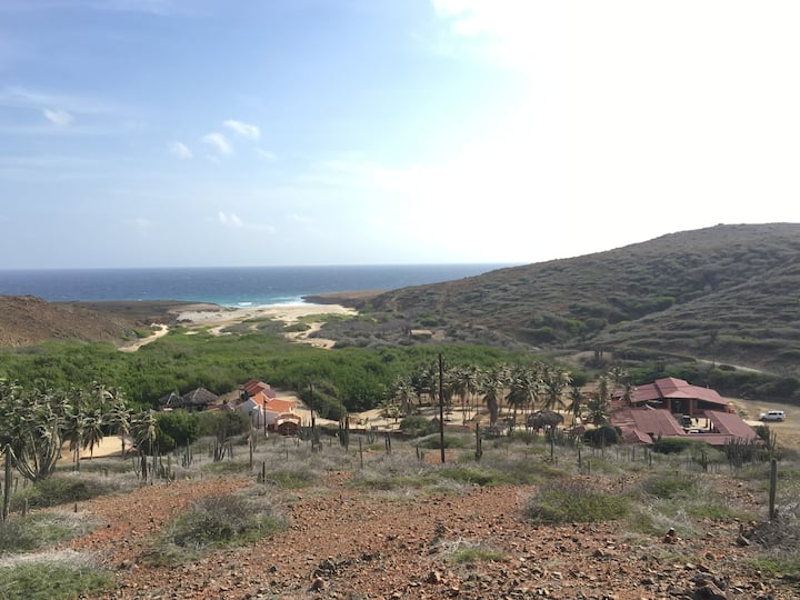 Glamping in Aruba's National Park