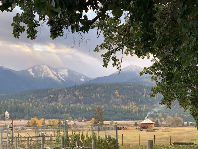 Northern Montana Yurt/ free WiFi & breakfast