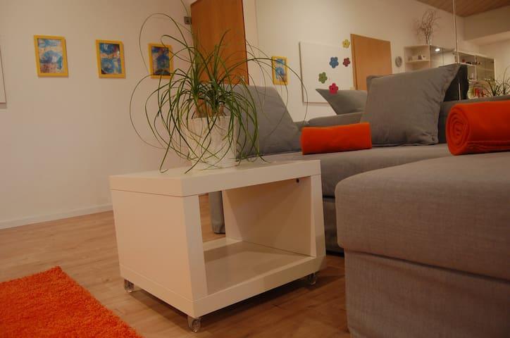 Großzügige ruhige Loft-Style-Wohnung zu vermieten